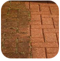 Soft Wash your red brick walkway w/ BlueSky Power Washing
