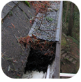 Power Wash Your Rain Gutters Siding and Be rid of Mold & Algae with BlueSky Power Washing