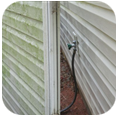 Soft Wash Your Vynl Siding and Be rid of Mold & Algae with BlueSky Power Washing