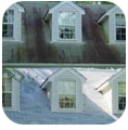 Blue Sky Power Washing ugly Roof Mold & Algae